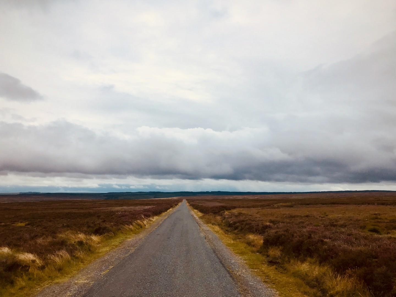 Roman Road to Pickering